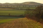 Farmland, Whipsnade