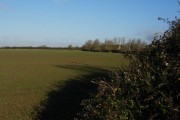 Field near East Green