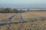 Farmland, Ewelme