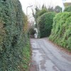 Maidenway Lane