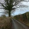 Lon gul ger Cwm Isaf / Narrow lane near Cwm Isaf.