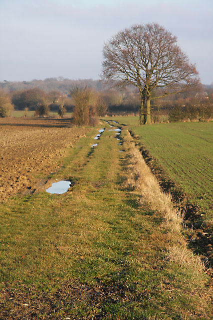 Track to Seymour Hall Farm