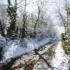 Winter view along Back Lane Shutford