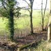Rooks Hill Farm