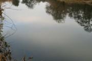 A Bend in the Derwent