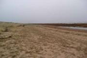 The beach at Preston Merse