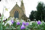 Lullington Church with spring flowers