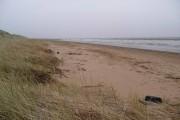 Mersehead coastal scene