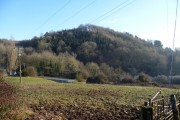 Menith Wood