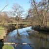 The River Wey near Frensham