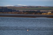 View over Montrose Basin into the distant Grampian Mountains