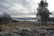 Open view towards Inverness from Gallowhill Wood