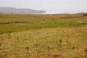 Waterlogged farmland