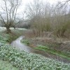 The little river behind Cherwell Valley Services