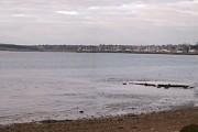 Orwell upriver Panorama