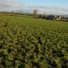 Holling's Farm, near Cradley
