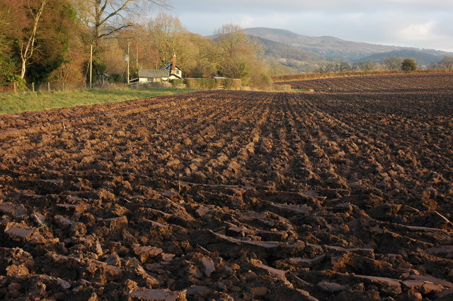 Cottage and ploughed field at Westfield, near Cradley