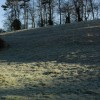 Frosted bank near Finstock