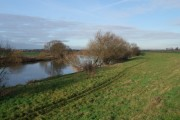 The Trent north of Winthorpe