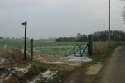 Farmland at Tickenhurst