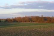 Farmland, Brightwell Baldwin