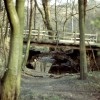 Bridges over the Moss Brook in Eckington Woods
