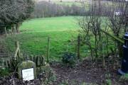 Farmland, A435, near Bagendon
