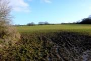 Countryside near Matravers
