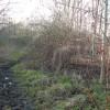 Manor Park Toton muddy path