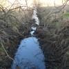 Manor Park Toton stream