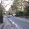 Brooklands Road from Whitehall Road