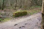 Bridge in Upper Ifold Wood