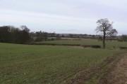 Farmland near Heatley Hall