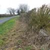 Lane, verge and ditch, near Marston Meysey