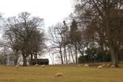 Farmland near Batsford Arboretum