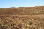 Moorland, Carn a' Chaorainn