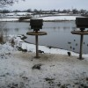 Carsington - Bird Hide View of Feeding Station