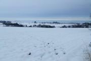 Fields at Panbride