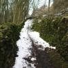 Windegg Lane through Scar House Wood