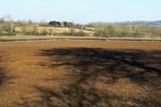 Farmland, near Compton Bassett