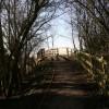 Bridge to the walkway