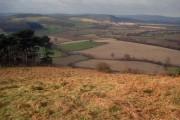 Overlooking Yatton Marsh
