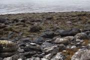 Across Little Loch Broom