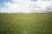 Field Near Barber's Farm