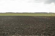 Farmland on Stalmine Moss