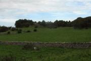 Farmland east of the Marian-Glas road