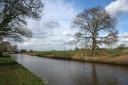 Shropshire Union Canal in early spring