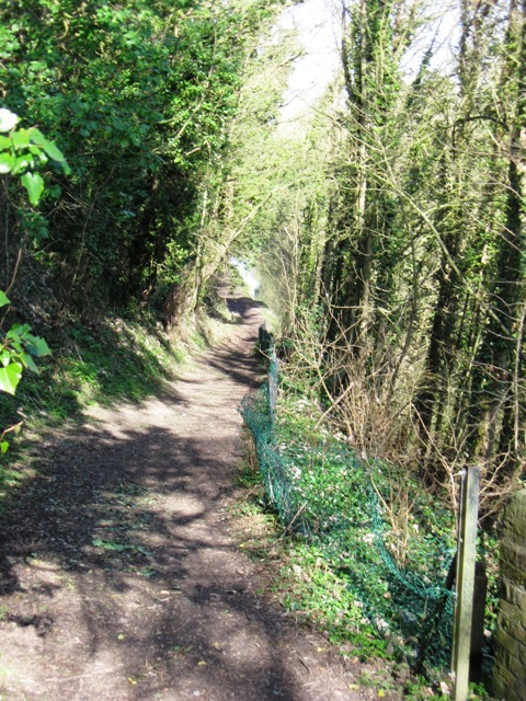 Grand Union Canal – Towpath Crossover West Side