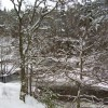 A wintry River Pattack