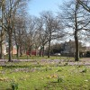 Spring comes to Batley Park